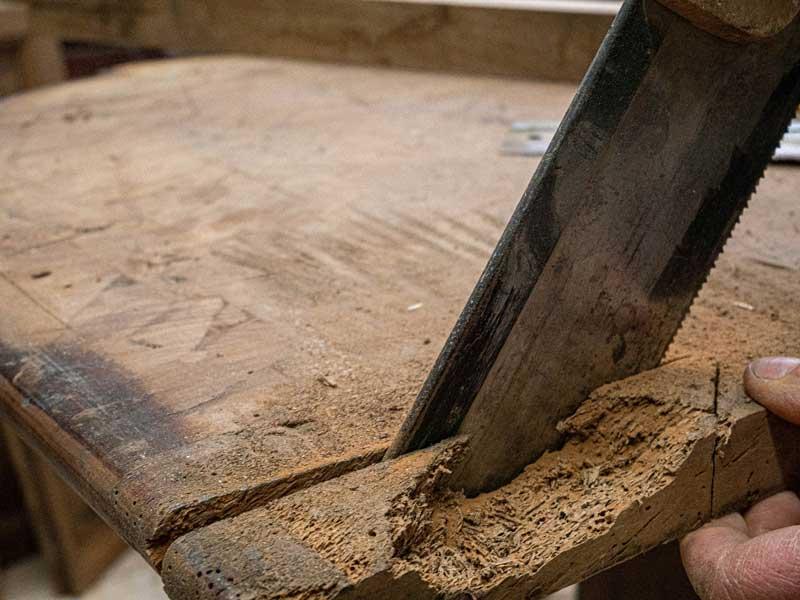Tarlo-del-legno-come-eliminarlo
